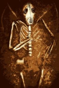 Hand of Bone by Wilum H Pugmire Illustrated by Luke Spooner