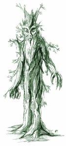 Treebeard  By Jef Murray